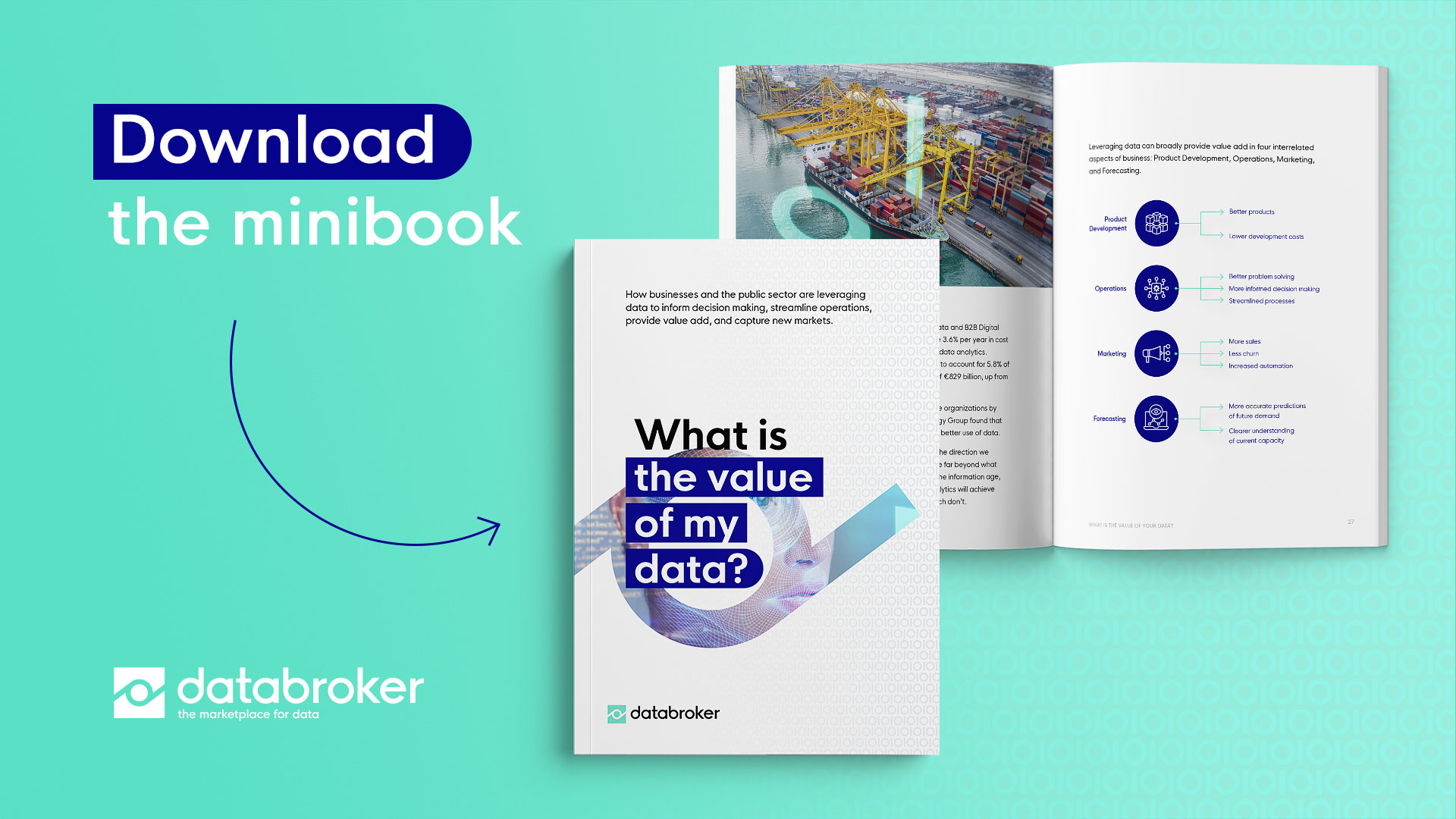 Databroker what is the value of my data minibook